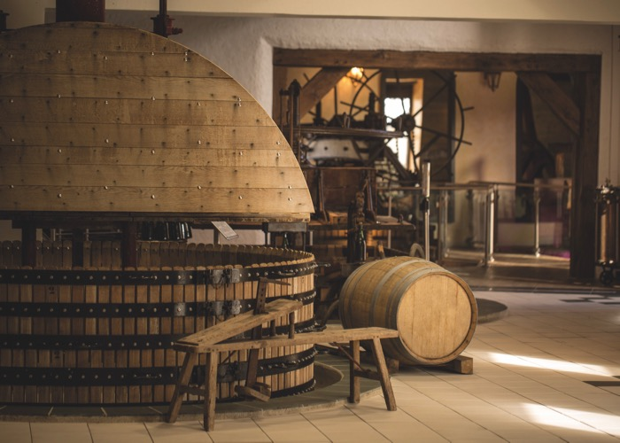 Visit of Museum during Wine day Tour