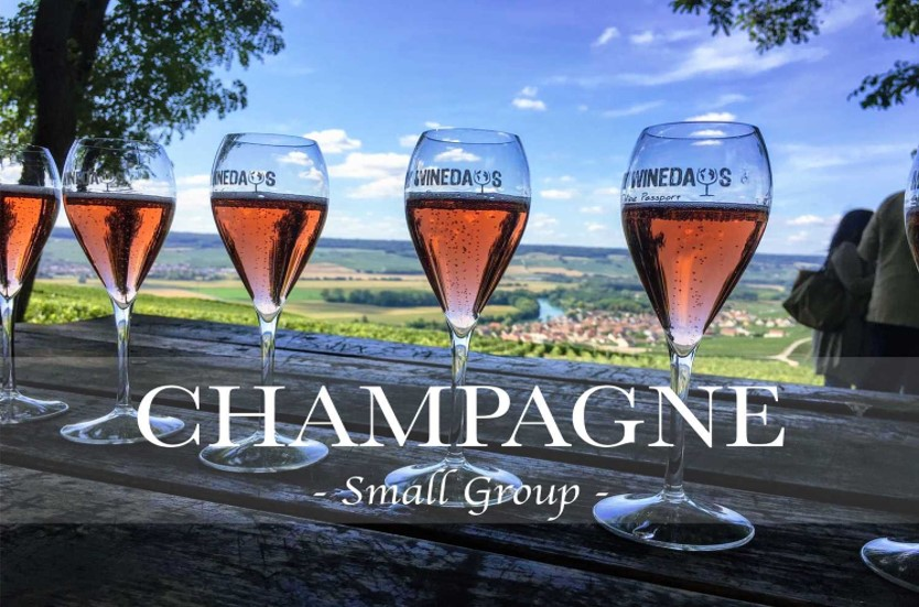 wineday in champagne