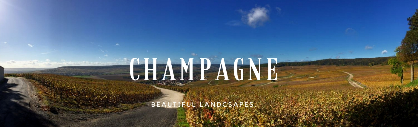Champagne wine tour from paris, a region of beautiful landscapes, wine day tour from paris