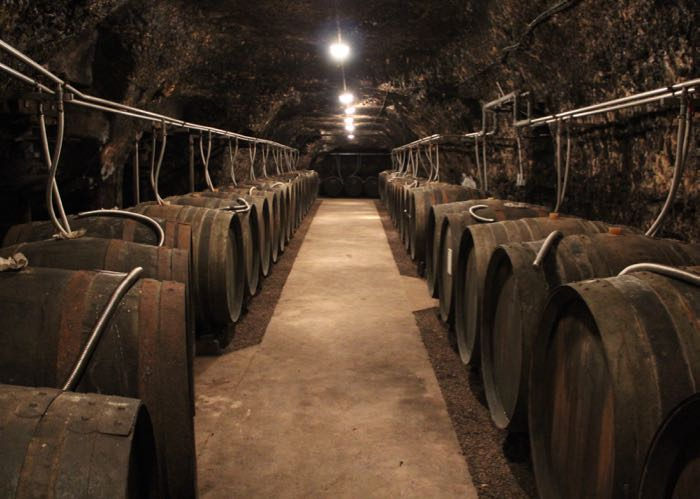 Loire valley cellar visit during a luxury wine day tour to Loire valley