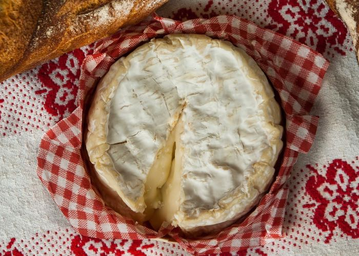 Tasting Camembert of Normandy during a wine day in Normandy from Paris