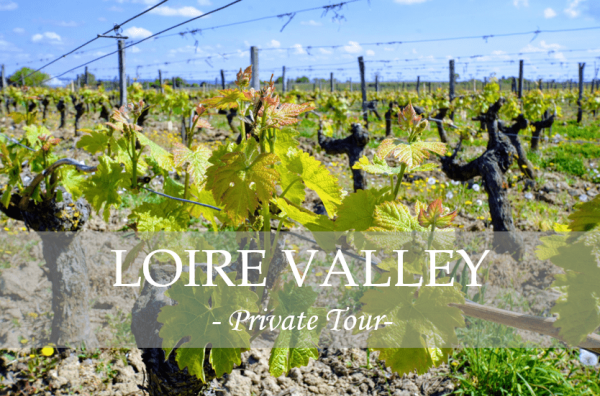 private tour loire valley