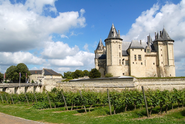 castle of Chinon Top 5 reasons to go to Loire Valley