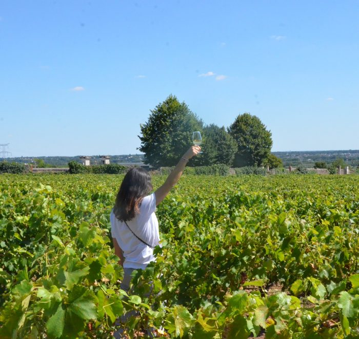 The 4 outstanding regions of Loire Valley