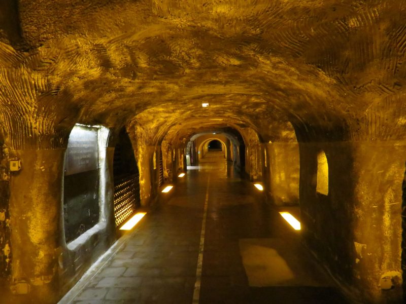 Visit epernay from Paris Champagne caves My Winedays
