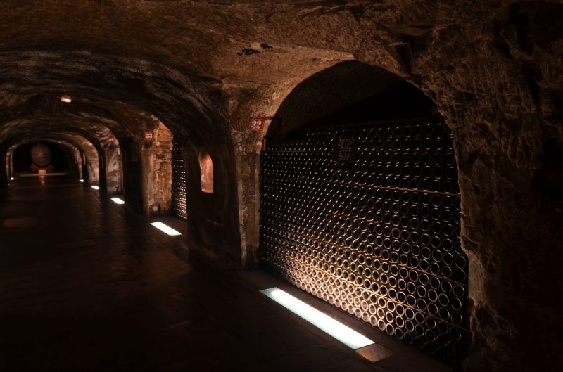 Champagne bottles in cellars My Winedays