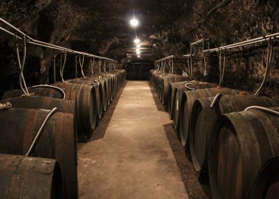 Cellars and barrels Loire Valley My Winedays